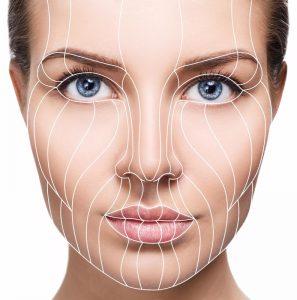 קולגן ועור הפנים שלנו